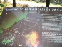 Camiño de San Andrés 2011